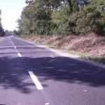 Drum vicinal Butnaresti -Birjoveni 1